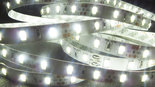 LED-Strip-Daglicht-Wit-SMD5630-60-Leds-p-m-6000K-IP20