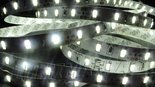 5m-LED-Strip-Daglicht-Wit-SMD5630-60-Leds-p-m-6000K-IP20