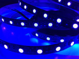 5M-Premium-UV-Led-Strip-395nm-IP20-SMD5050-300-Leds-12V-met-Zwarte-PCB