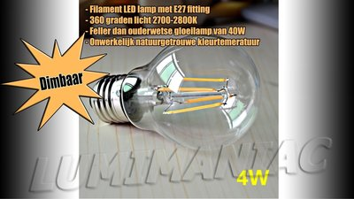 E27 LED Filament Lamp 4W Warm Wit 2700K Dimbaar