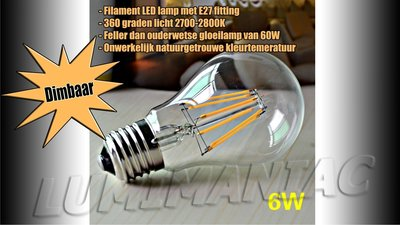 E27 LED Filament Lamp 6W Warm Wit 2700K Dimbaar